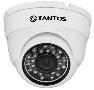 2Мп.IP видеокамера купольная уличная антивандальная модель: TSi-Vecof2 (3.6)
